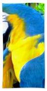 Blue Yellow Macaw. Parrot. Photo Of Bird Beach Towel