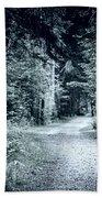 Path In Dark Forest Beach Towel by Elena Elisseeva