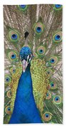 Peacock Full Plumage Beach Towel