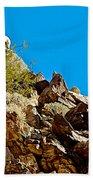 Peninsular Bighorn Sheep From Borrego Palm Canyon Trail In Anza-borrego Desert Sp-ca Beach Towel