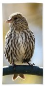 Pine Siskin Beach Towel