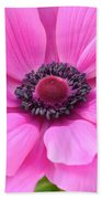 Pink Anemone  Beach Towel