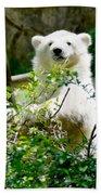 Polar Bear Cub  Beach Towel