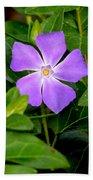 Pretty Purple Pinwheel Beach Towel