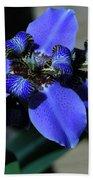 Purple Iris 2 Beach Towel