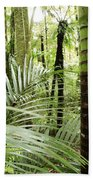 Rainforest  Beach Towel