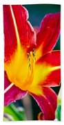 Red And Yellow Lily Beach Towel