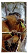 Red Colobus Monkey Beach Towel