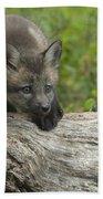 Red Fox Kit Beach Towel