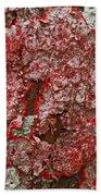 Red Lichen  Beach Towel