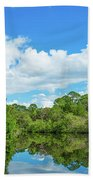 Reflection Of Trees And Clouds In South Beach Towel