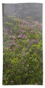 Rhododendron In Del Norte State Park, Ca Beach Towel