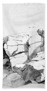 Rocks At Narragansett Beach Towel