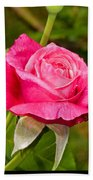 Rose Flower Beach Towel