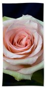 Roses 8405 Beach Towel