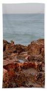Ross Witham Beach Hutchinson Island Martin County Florida Beach Towel