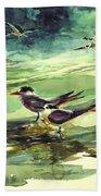 Royal Terns And Black Skimmers Beach Sheet