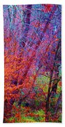 Run Forest Run Beach Towel