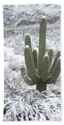 Saguaro Cactus After Rare Desert Beach Towel