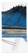 Sailfish Beach Towel