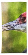 Sandhill Crane Grus Canadensis Beach Towel