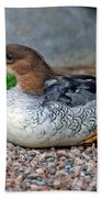 Scaly-sided Merganser Hen Beach Towel