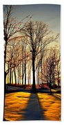 Scenic Sunset Beach Towel