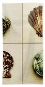 Seashell Composite Beach Towel
