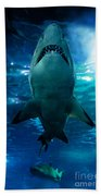 Shark Silhouette Underwater Beach Towel