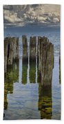 Shore Pilings At Fayette State Park Beach Towel