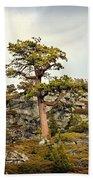 Sierra Landscape Beach Sheet