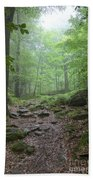 Silence Of The Forest Beach Towel