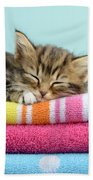 Sleepy Kitten Beach Towel