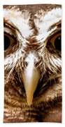 Spectacled Owl  Beach Towel