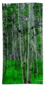 Spectacular Aspens Beach Towel