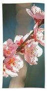 Spring Peach Tree Blossom Beach Towel