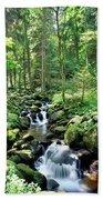 Stream Flowing Through A Forest, Usa Beach Towel