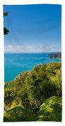 Subtropical Forest Of Abel Tasman Np In New Zealand Beach Towel