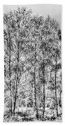 Summer Forest Trees Beach Towel