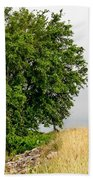 Summer Tree Beach Towel