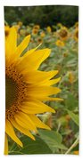 Sun Flower Fields Beach Towel
