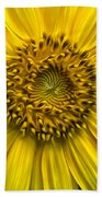 Sunflower In Oil Paint Beach Towel