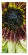 Sunflower In Oils Beach Towel