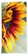 Sunflower Named The Joker Beach Towel
