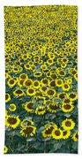 Sunflower Nirvana 13 Beach Towel