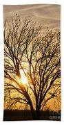 Sunset Tree Beach Towel
