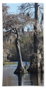 Swampreflection  Beach Towel