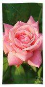 Sweet Pink Rose Beach Towel by Carol Groenen