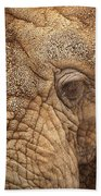 The Elephant Beach Towel