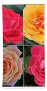 Spring Time Roses Beach Towel